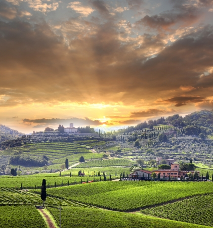 tuscany: Chianti vineyard landscape in Tuscany, Italy