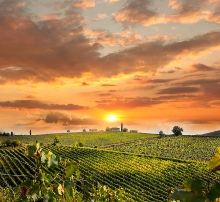 Chianti wijngaard landschap in Toscane, Italië