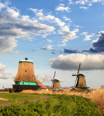 Traditional Dutch windmills with red tulips close the Amsterdam, Holland Stock Photo - 19583851