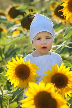 Beautiful girl  with sunflower during summer photo