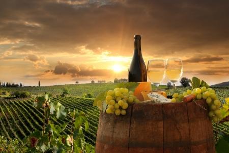 Vin blanc avec canon sur vignoble in Chianti, en Toscane, Italie Banque d'images - 21483111