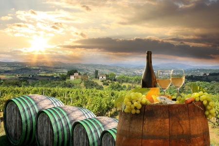 Witte wijn met vat op wijngaard in Chianti, Toscane, Italië Stockfoto