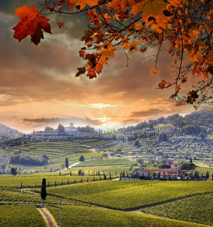 Chianti wijngaard landschap in Toscane, Itali Stockfoto