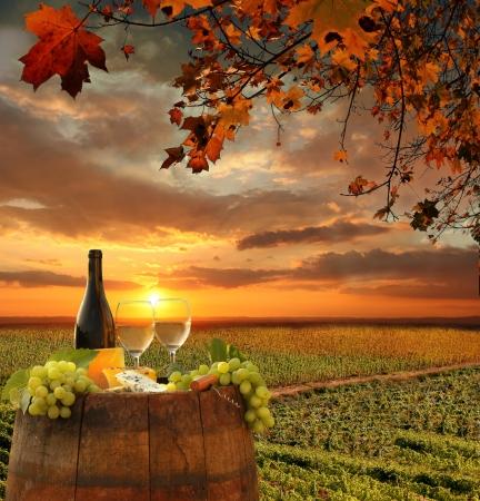 Vino bianco con il barile sul vigneto in Chianti, Toscana, Italia