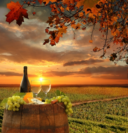 White wine with barrel on vineyard in Chianti, Tuscany, Italy Stock Photo - 21803764