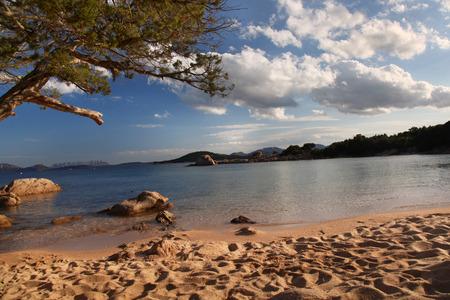 rotondo: Costa Smeralda with amazing beach in Capriccioli, Sardinia