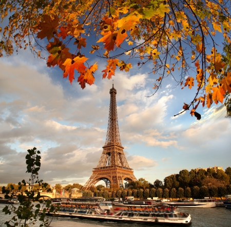 Eiffel Tower with autumn leaves in Paris, France photo