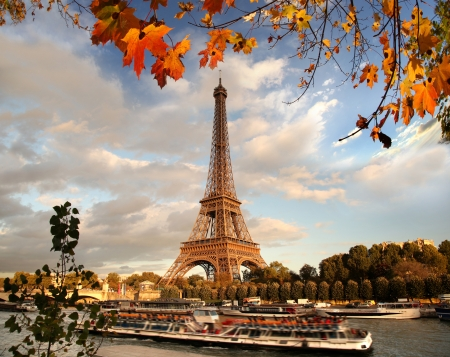 eiffel tower: Eiffel Tower with autumn leaves in Paris, France