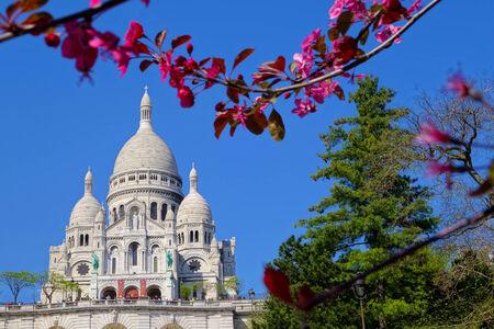 copule: Catedral Sacre Coeur en primavera en Par�s, Francia Foto de archivo