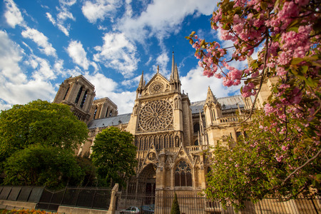 Notre Dame de Paris during spring time in France photo