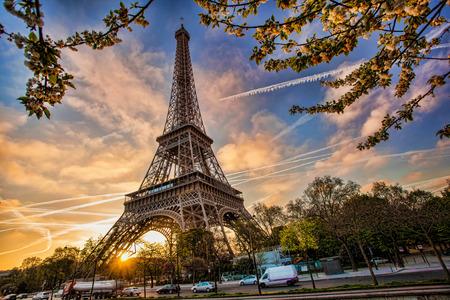 프랑스 파리에서 봄 나무와 에펠 탑 스톡 콘텐츠
