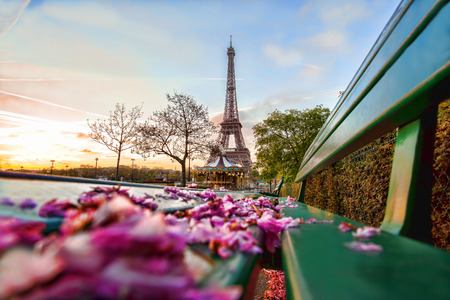Eiffel Tower with spring leaves in Paris, France Stock Photo