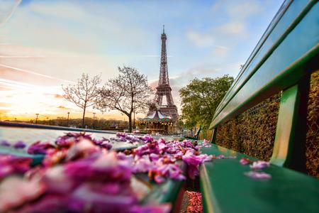 Eiffelturm mit Federblätter in Paris, Frankreich Standard-Bild