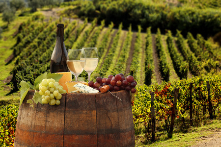 White wine with barrel on vineyard in Chianti, Tuscany, Italy Banco de Imagens - 30607786