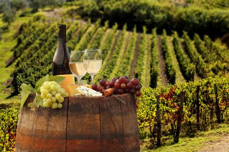 Witte wijn met vat op wijngaard in Chianti, Toscane, Italië Stockfoto - 30607786