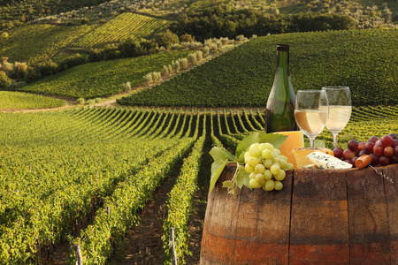 White wine with barrel on vineyard in Chianti, Tuscany, Italy photo