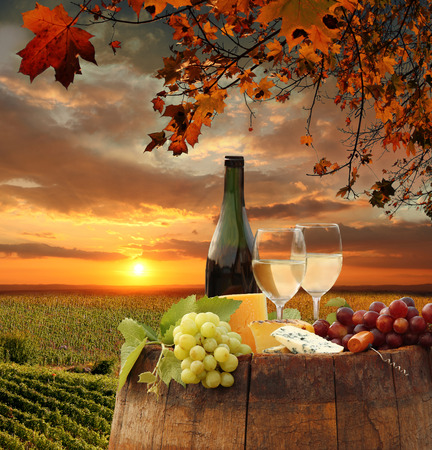 White wine with barrel on vineyard against sunset 版權商用圖片