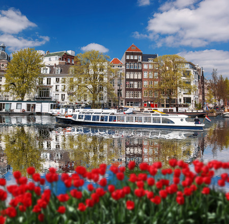 Amsterdam city with boats on canal against red tulips in Holland photo