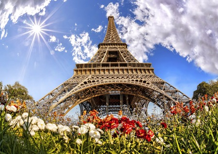 Eiffel Tower with flowers  in Paris, France photo