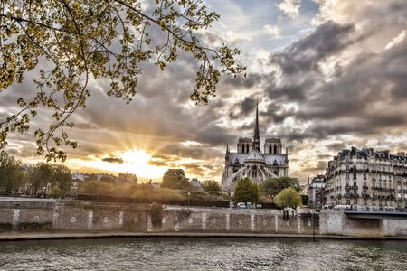 parisian: Notre Dame cathedral in spring time, Paris, France