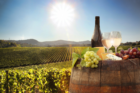 White wine with barrel on famous vineyard in Chianti, Tuscany, Italy
