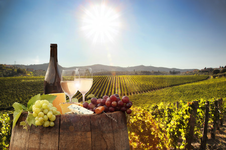 White wine with barrel on famous vineyard in Chianti, Tuscany, Italy Stock Photo - 46156650