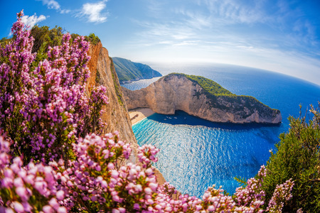blue sea: Navagio beach with shipwreck and flowers against sunset, Zakynthos island, Greece