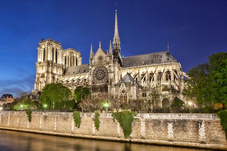 dame: Notre Dame de Paris in France