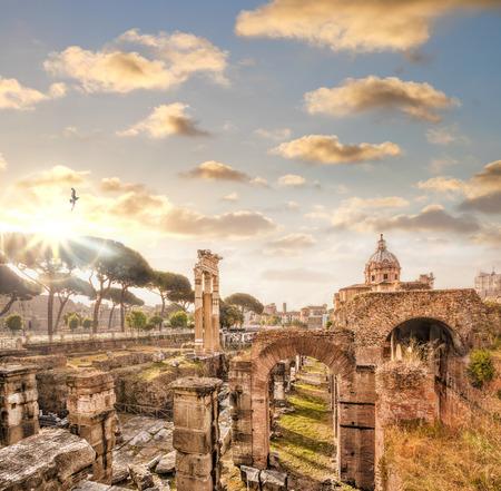 Famose rovine romane a Roma, Italia Archivio Fotografico