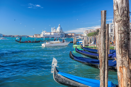 adriatic: traditional Gondolas on Grand Canal in Venice, Italy