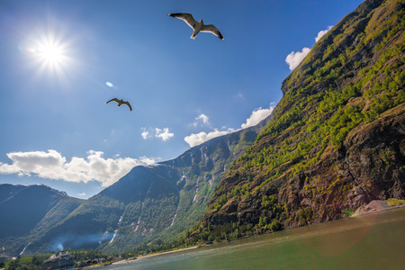 caribbean cruise: Beautiful fjords near the Flam in Norway