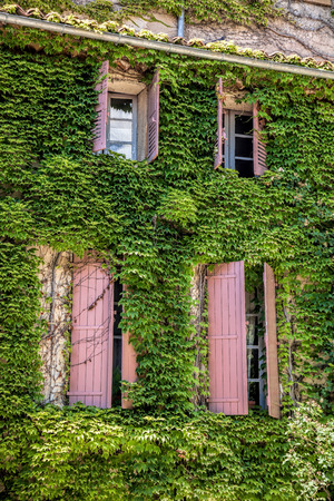 apt: Old house with green leaves in Provence, France