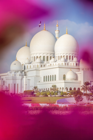 abudhabi: Sheikh Zayed Grand Mosque with flowers in Abu-Dhabi, United Arab Emirates