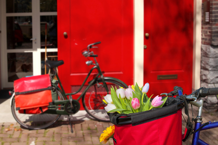 Famous Amsterdam with basket of colorful tulips against house in Holland