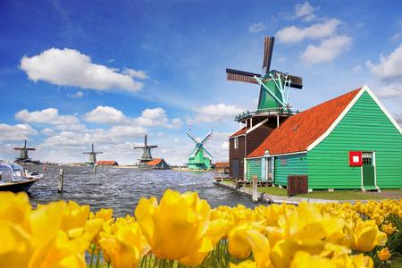 zaandam: Traditional Dutch windmill with tulips in Zaanse Schans, Amsterdam area, Holland Stock Photo