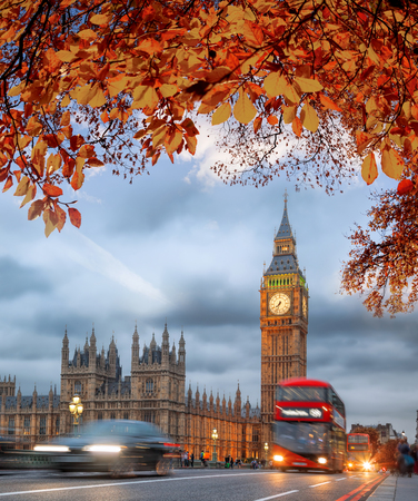 Buses with autumn leaves against Big Ben in London, England, UK Фото со стока