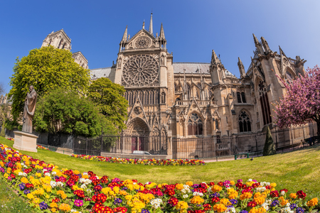 Paris, Notre Dame cathedral with spring flowers in France Reklamní fotografie - 119604986