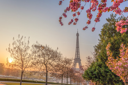 Eiffel Tower with spring trees in Paris, France Reklamní fotografie - 119604994
