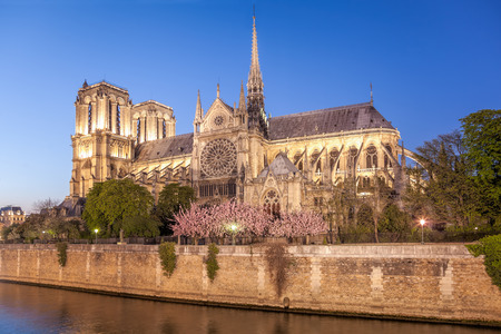 Paris, Notre Dame cathedral in the evening during spring time, France 版權商用圖片