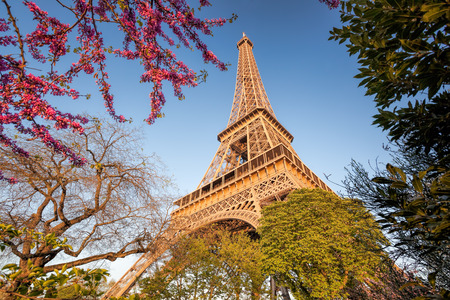 Eiffel Tower during spring time in Paris, France Reklamní fotografie - 119605002