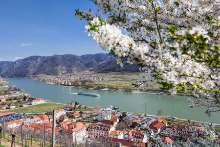 Spring time in Wachau, Spitz village with boat on Danube river, Austria Reklamní fotografie - 120139593