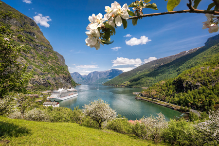 Flam village with ship in harbor against fjord during spring time, Norway Reklamní fotografie - 120713053