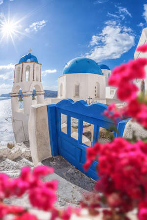Oia village with churches against red flowers on Santorini island in Greece Фото со стока