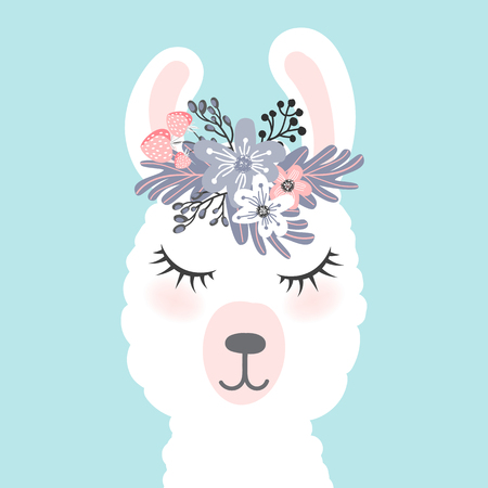 little white lama head  illustration