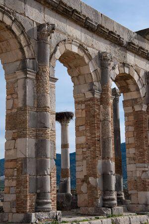 volubilis: ruins in volubilis