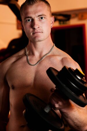 Man exercising his arm muscles by lifting two dumbell free weights in a fitness club Stock Photo - 13233044