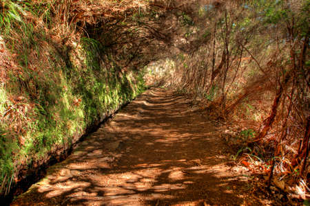 Levada path near Rabacal Madeira, Portugal  Stock Photo - 13366262