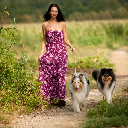 collies: Young woman taking two collies on a walk Stock Photo