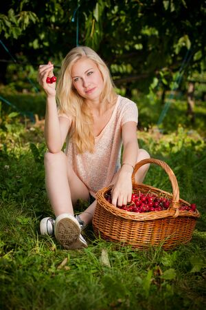 cherry: Beautiful young blond woman harvesting cherries on a hot spring sunny day in cherry plantation Stock Photo