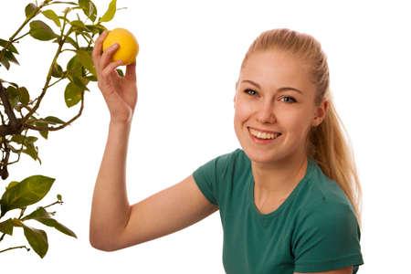 organically: Blonde woman harvesting big, yellow lemons from organically grown lemon tree. Pure natural healthy vitamin.